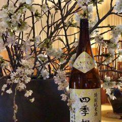 ○四季桜 特別純米 はなのえん (栃木)